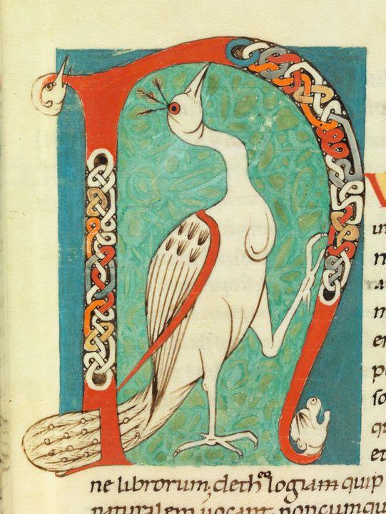 c. 1100~Decorative Initial 'N' - Old master image