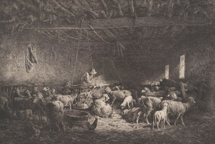 Charles Jacque~The Large Sheepfold ( - Old master image