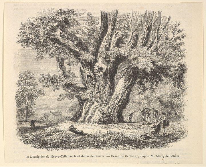 Charles-François Daubigny~Le Châtaig - Old master image