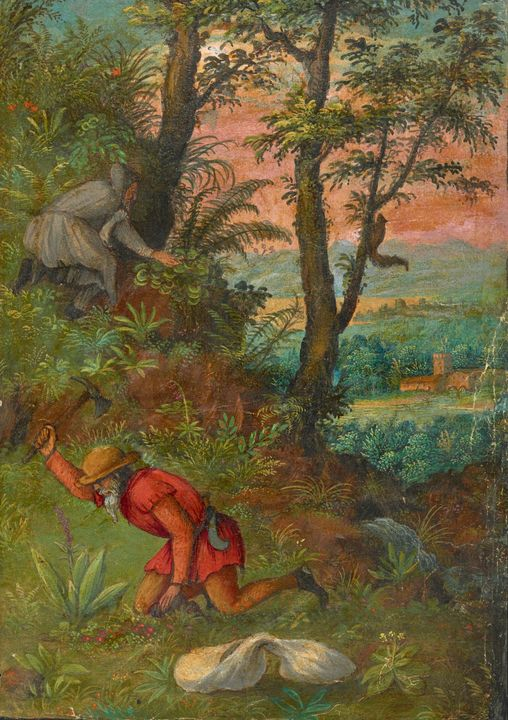 16th century~Herbal of Pietro Andrea - Old master image
