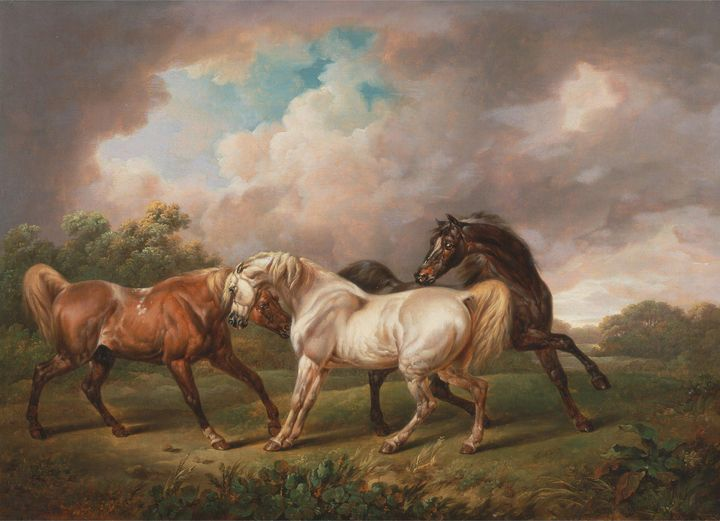 Charles Towne~Three Horses in a Stor - Old master image