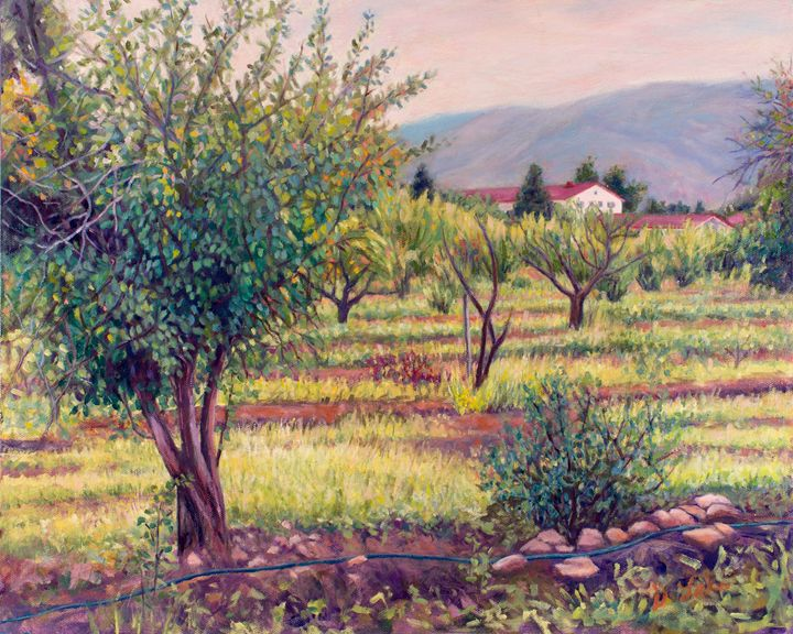 Apricot Orchard - Denise Sils, Inc.