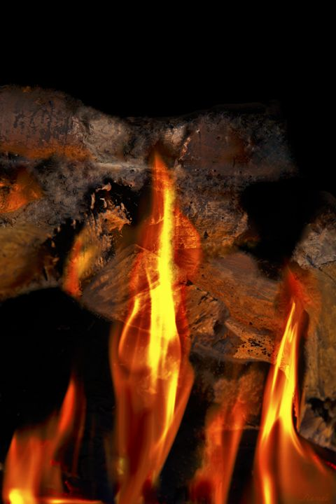 Burning Darkness 1 - Renee Anderson