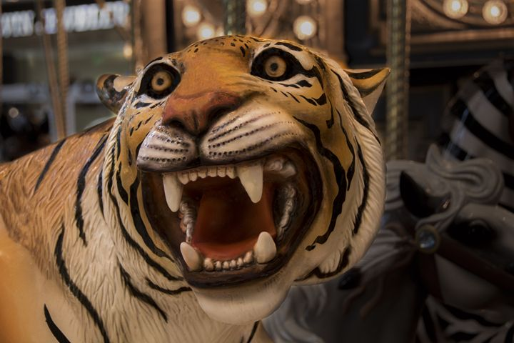 Carousel Tiger - Renee Anderson
