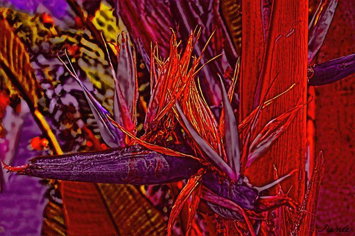 Color Flight #3 - Renee Anderson