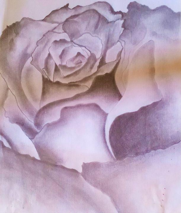 Black and White Rose - Venus Art Gallery