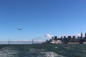 San Fransico From Afar
