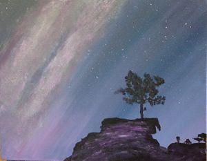 Lone Cypress - Cindy Magallanes