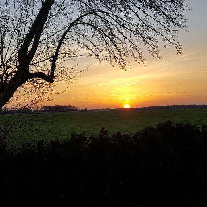 Sunset over Cornfield - 2GuysRving Traveling Gallery