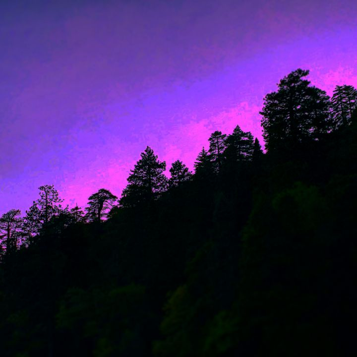 Purple Sky - Daved Thom Images