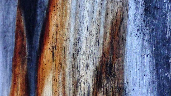 Natural color 2 - Amanda Paints LLC