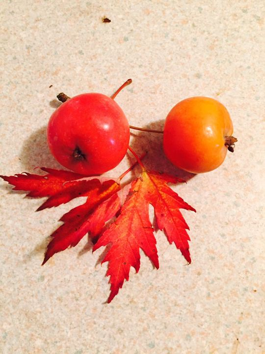 fruit - doris