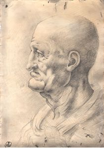 Head of old man (Da Vinci copy)