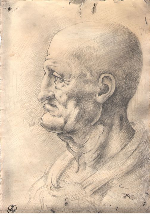 Head of old man (Da Vinci copy) -  A.yerkesh