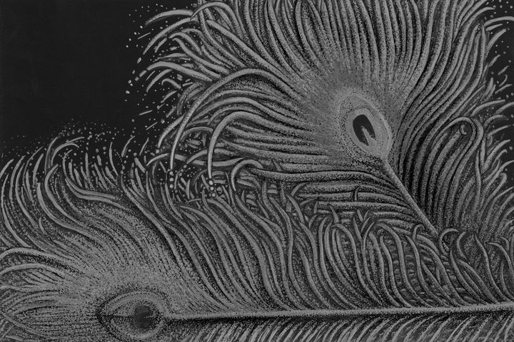 Full Bloom Greyscale - Altered States of Gravity