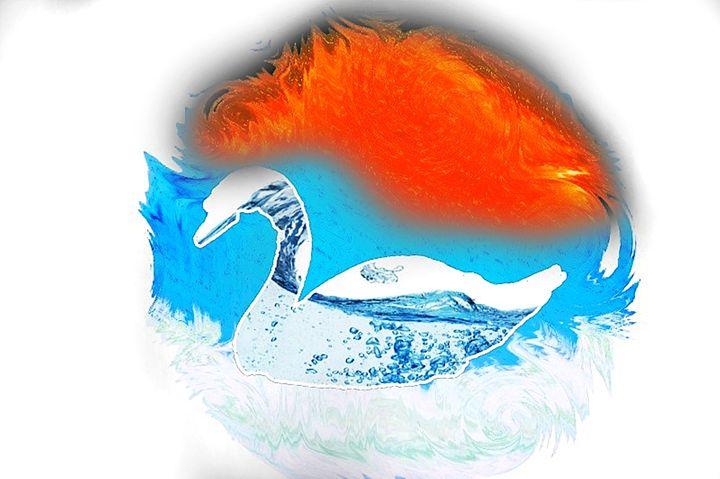 Beautiful swan - White Angel
