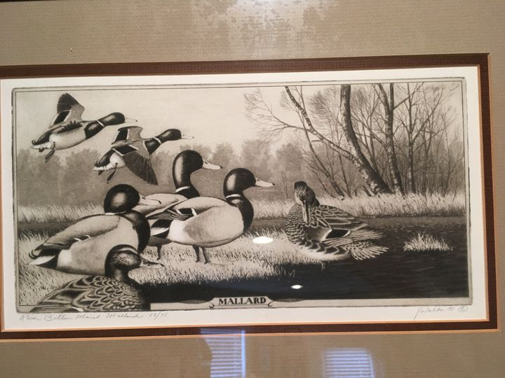 River bottom marsh mallards - Wilson Western art