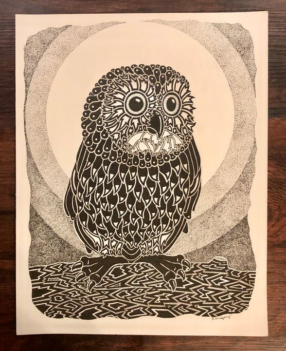 Little Owl - Bryan Montgomery