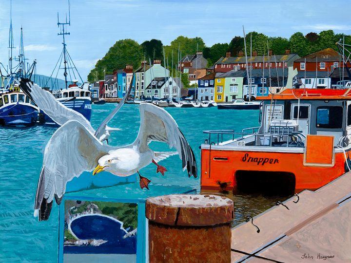 Seagulls at Weymouth - John Haynes Art