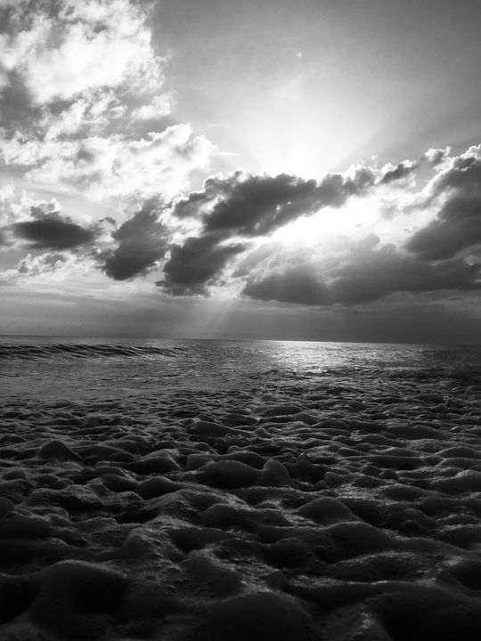 Let Your Light Shine BW - Fantail Images- Lora Ross