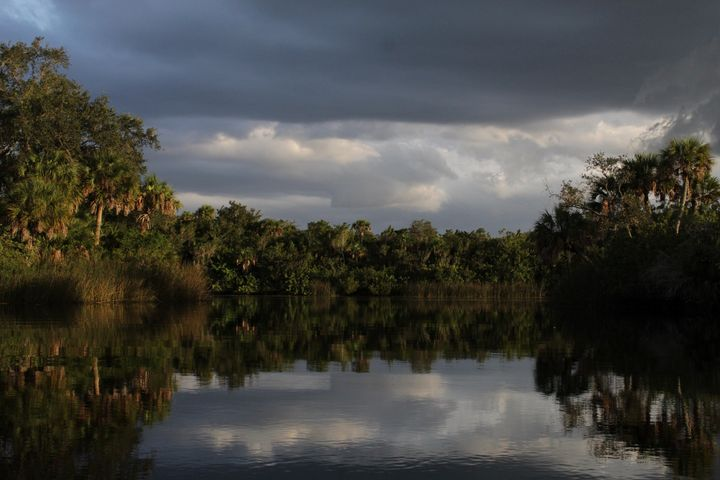 Evening Reflections - Fantail Images- Lora Ross