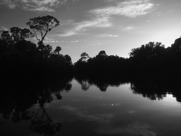 Reflections From The Deep - Fantail Images- Lora Ross