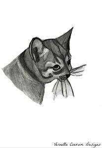 Color Blind Cat