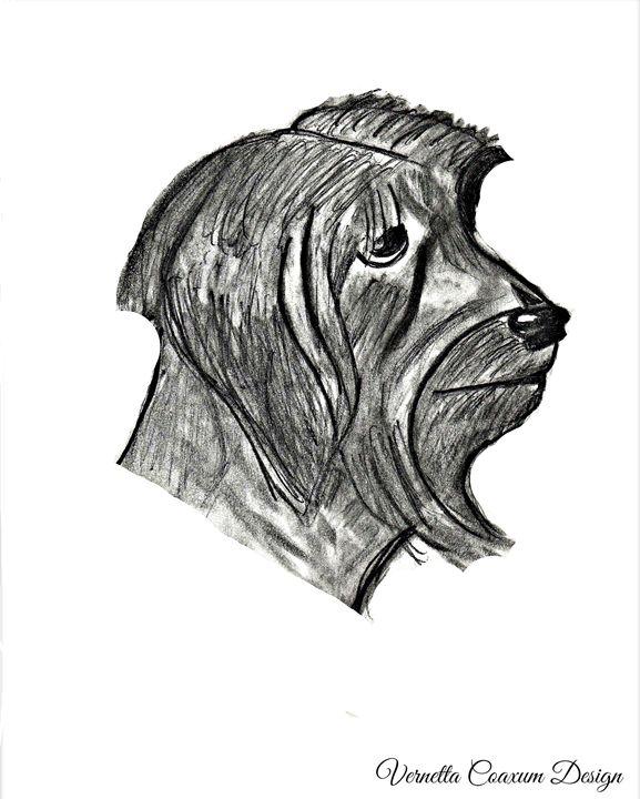 Color Blind Dog - Color Blind Artistry