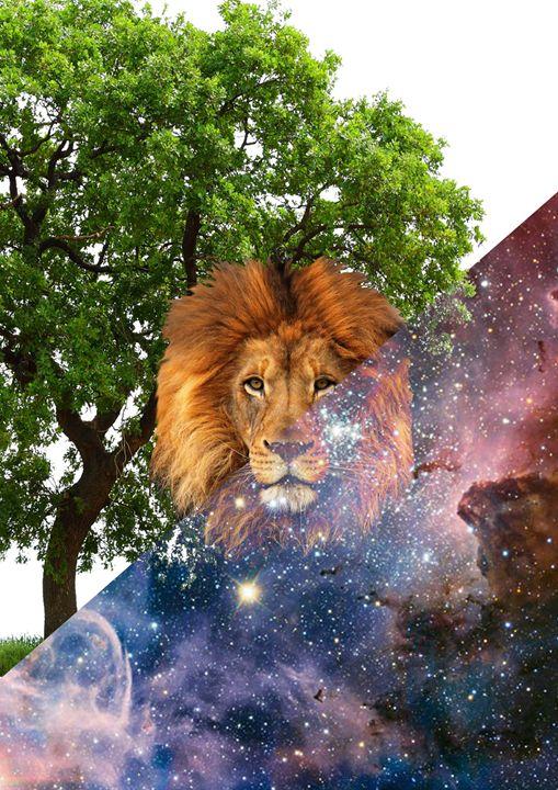 King Of The Jungle - Stuff