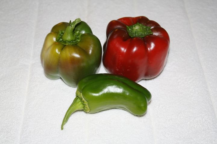 Bell Peppers and Pepper - Lorenzo