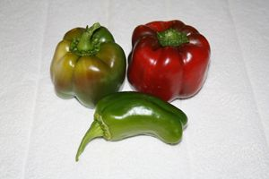 Bell Peppers and Pepper
