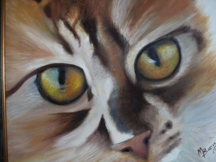 Kitty Eyes - Academy of Fine Art & Studio