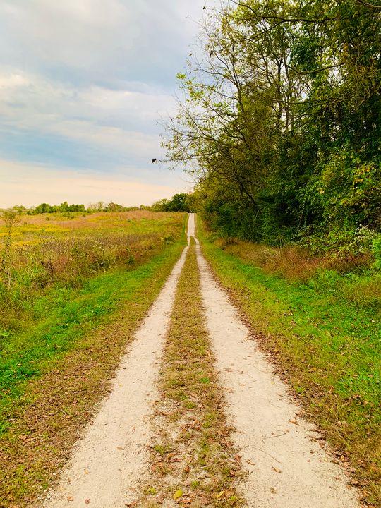 The path - NatAnat