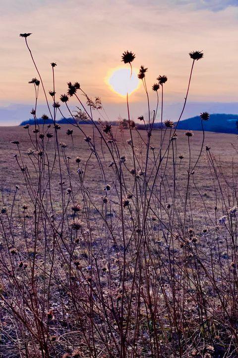 Sunset - NatAnat