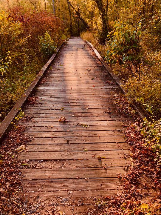 Unknown path - NatAnat