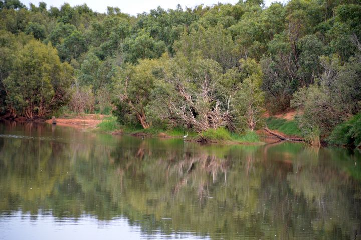 River Reflection - LynneE