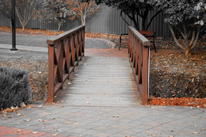 Wooden Bridge - LynneE