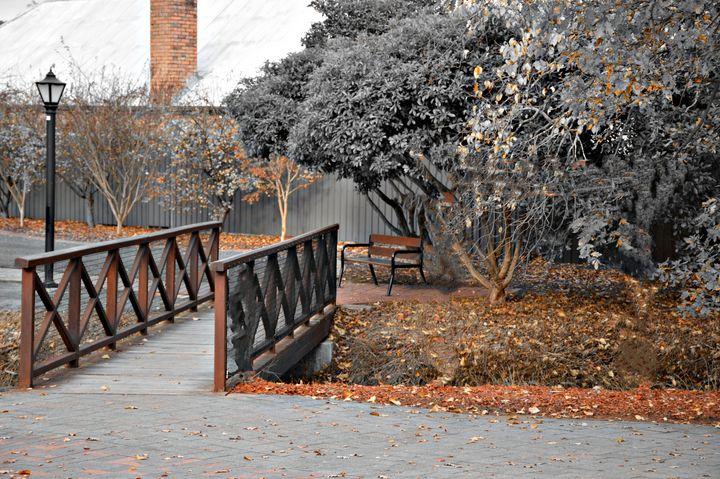 Across the wooden bridge - LynneE