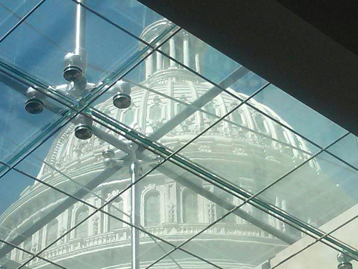 Capitol Pane - Lady Joyce's Gallery