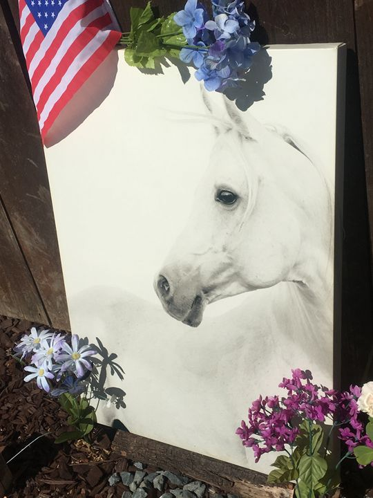 wall art horse portrait - Spectacularcollections