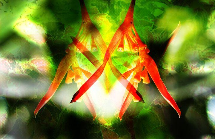 Mantis - Custom Collages