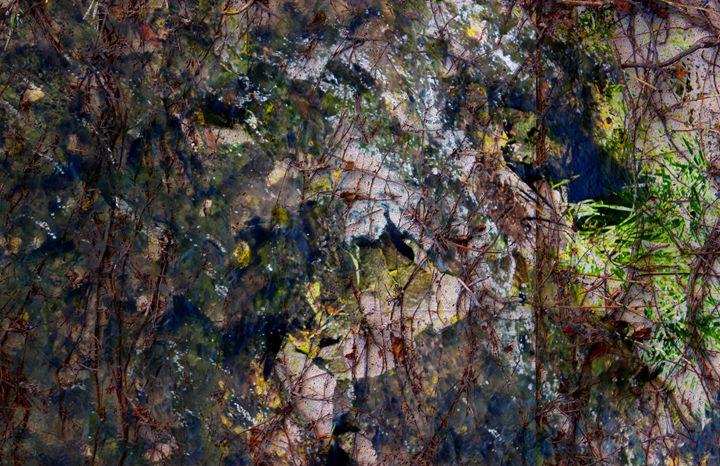 Marsh - Custom Collages