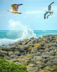 Rocky Take-off