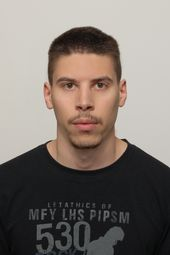 Nikola Mitrovic