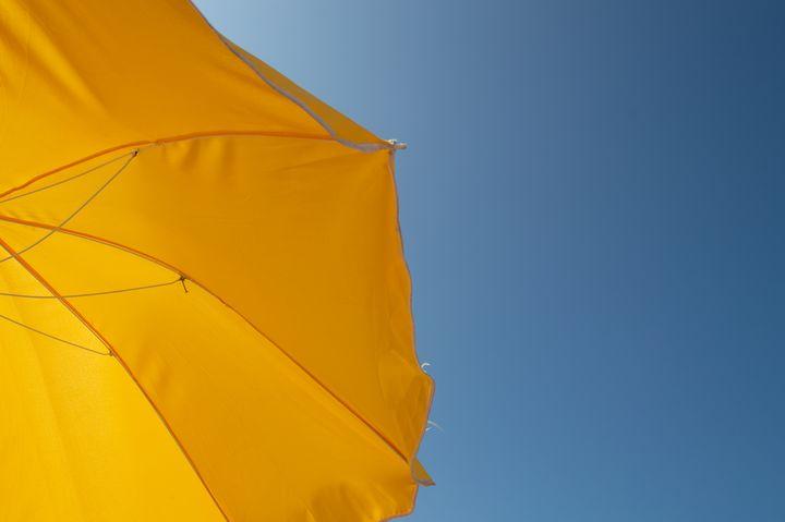 Yellow & Blue Bliss - Jerome Paulos