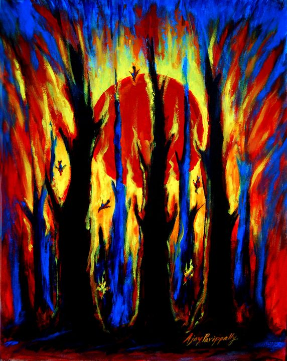 Sunset in the burning forest - Ajayparippally