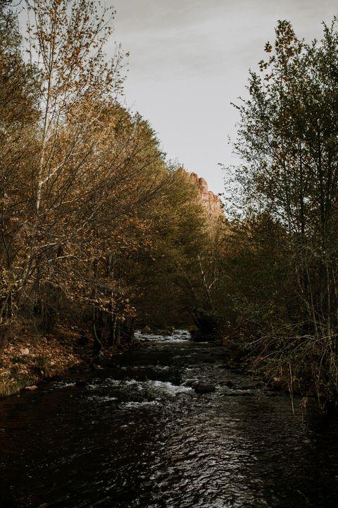Creek in Sedona - Anita McLeod Photography