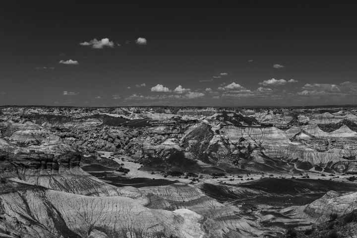 Black and White Blue Mesa - Anita McLeod Photography