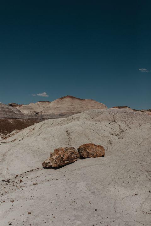 Petrified Wood in Blue Mesa - Anita McLeod Photography