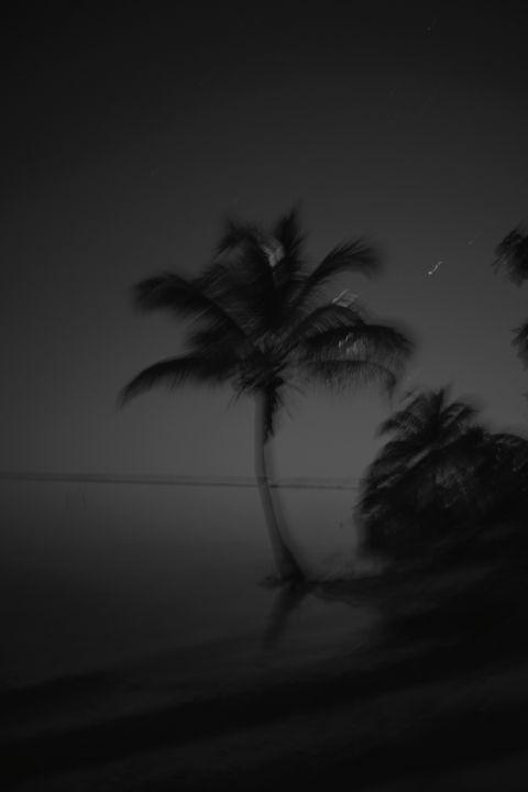 Moonlight - Nini Blanco